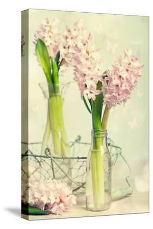 Spring Hyacinth Flowers in Vintage Glass Bottles