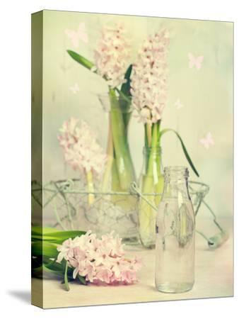 Spring Hyacinths with Focus