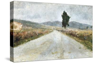 The Tuscan Road