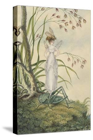 A Fairy with a Bee on Her Head Standing on a Grasshopper