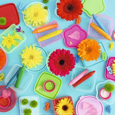 Colors and Flowers by Amelie Vuillon