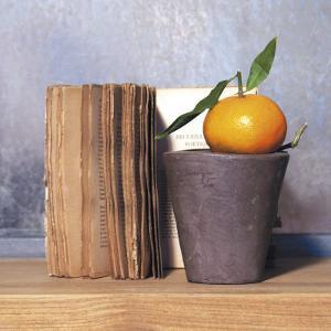 Orange and Book by Amelie Vuillon