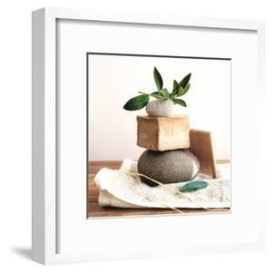 Pile with Olive Tree Branch by Amelie Vuillon
