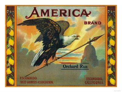 America Lemon Label - Escondido,CA-Lantern Press-Art Print