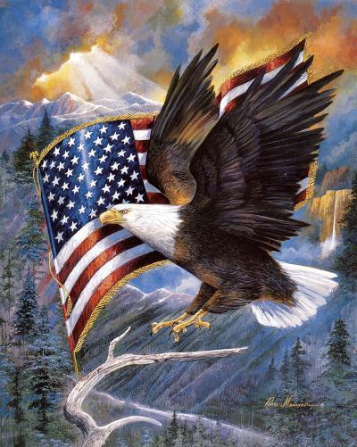 America'S Pride-Ruane Manning-Art Print