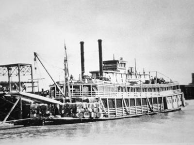 A Stern-Wheeler Loaded with Cotton Bales at New Orleans, C.1900 (B/W Photo)