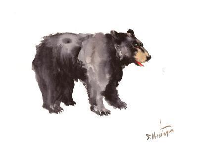 American Black Bear-Suren Nersisyan-Art Print