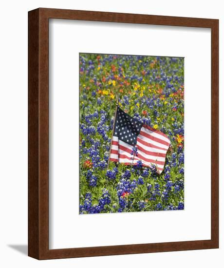 American Flag in Field of Blue Bonnets, Paintbrush, Texas Hill Country, USA-Darrell Gulin-Framed Photographic Print
