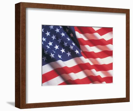 American Flag, Stars and Stripes-Terry Why-Framed Photographic Print