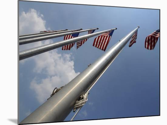 American Flags Flying on a Flag Pole in the Usa--Mounted Photographic Print