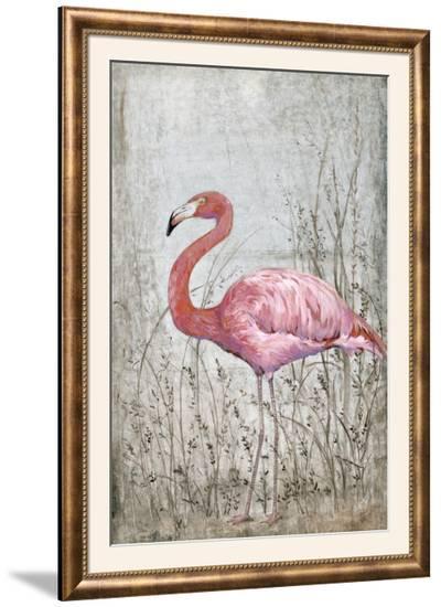 American Flamingo II-Tim O'toole-Framed Photographic Print
