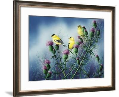 American Goldfinch and Thistle-Wanda Mumm-Framed Giclee Print