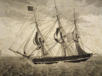American Merchant Ship, by Giuseppe Fedi Aliprandi, 19th Century--Giclee Print
