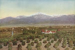 Redlands, California, View from Smiley Heights by American Photographer