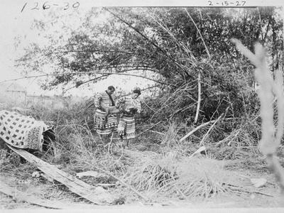Seminole Indians with a Captured Alligator