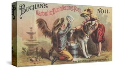 Advertisement for Buchan's Carbolic Disinfecting Soap No. 11, C.1880