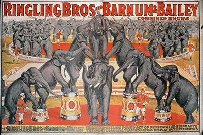 Barnum and Bailey Circus Poster by American School