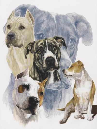American Staffordshire Terrier-Barbara Keith-Giclee Print
