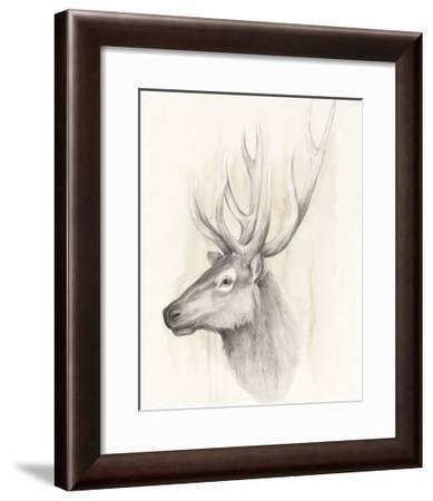 American Wilderness III-Grace Popp-Framed Art Print
