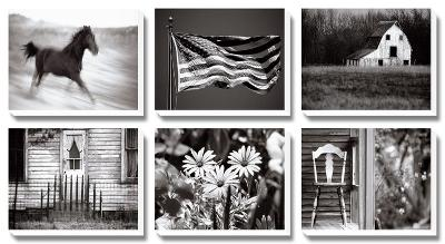Americana-James O'mara-Canvas Art Set