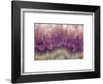 Amethyst-Darrell Gulin-Framed Photographic Print