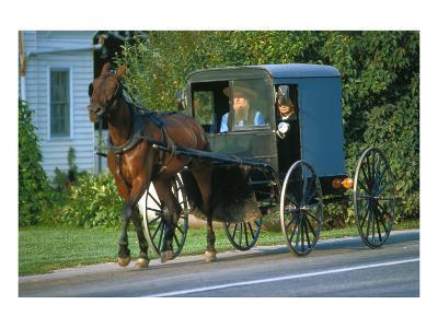 Amish in a carriage, Pennsylvania, USA--Art Print