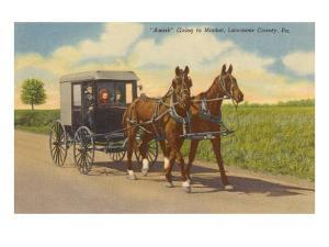 Amish in Carriage, Lancaster County, Pennsylvania