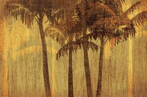 Sunset Palms III by Amori