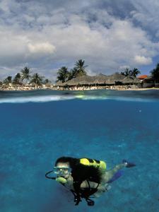 Woman Scuba Diving, Bonaire, Caribbean by Amos Nachoum
