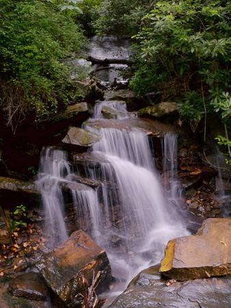 A Beautiful Gentle Waterfall in a Forested Scenic