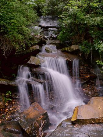 A Beautiful Gentle Waterfall in a Forested Scenic by Amy & Al White & Petteway