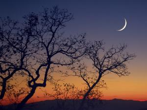 A Crescent Moon Rises over the Mountains at Sunset by Amy & Al White & Petteway