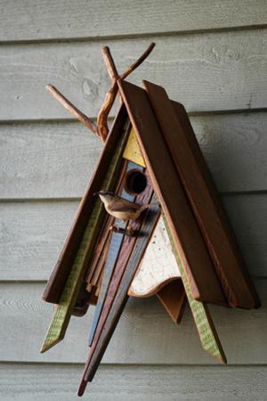 Carolina Wren Bringing Food to a Nest in a Fanciful Birdhouse by Amy & Al White & Petteway