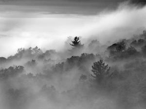 Clouds Rolling Through the Blue Ridge Mountains by Amy & Al White & Petteway