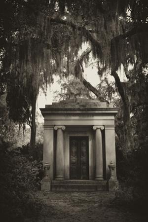 Spanish Moss-draped Tree Branches Hang Over a Mausoleum by Amy & Al White & Petteway