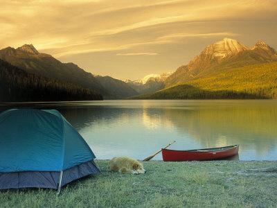 Camping, Bowman Lake, Glacier National Park, MT