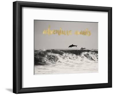Dolphins Adventure Awaits Golden