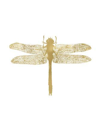 Dragonfly Golden White