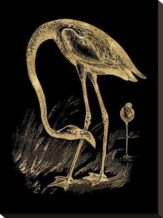 amy-brinkman-flamingo-1-golden-black