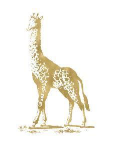 Giraffe Golden White by Amy Brinkman