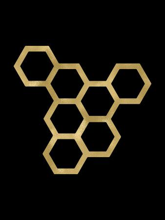 amy-brinkman-honeycomb-modern-golden-black