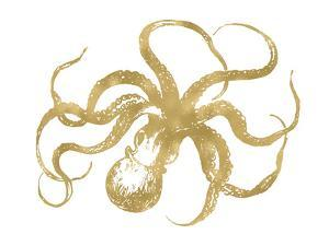 Octopus Golden White by Amy Brinkman