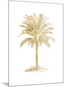 Palm Tree Golden White by Amy Brinkman