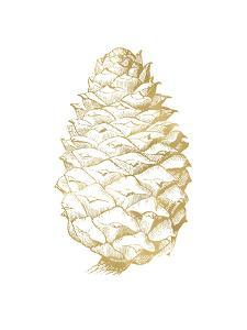 Pine Cone Golden White by Amy Brinkman