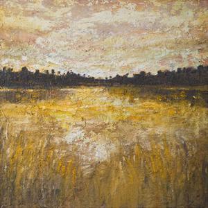 Marsh by Amy Donaldson