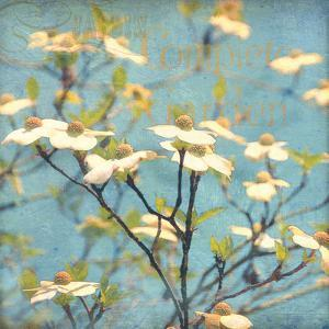 Dogwood I - Blossoming Tree by Amy Melious
