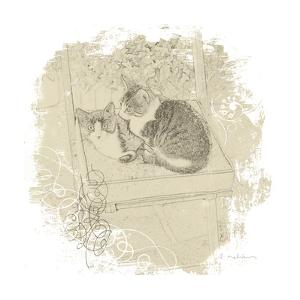 Feline Illustration II by Amy Melious