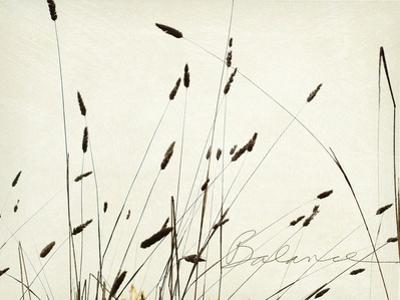 Grass Balance