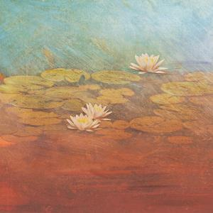 Pond Lilies I by Amy Melious