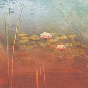 Pond Lilies II by Amy Melious